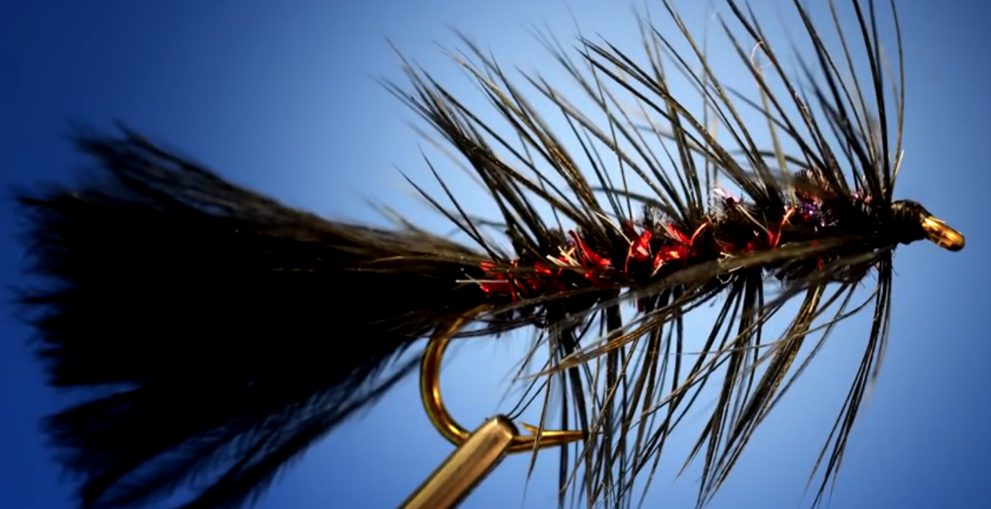 A Better Woolly Bugger – Fly Pattern of the Week