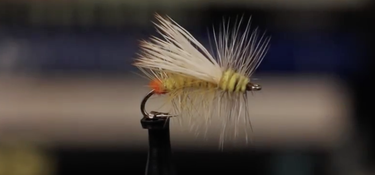 Yellow Sally Stimulator – Fly Pattern of the Week